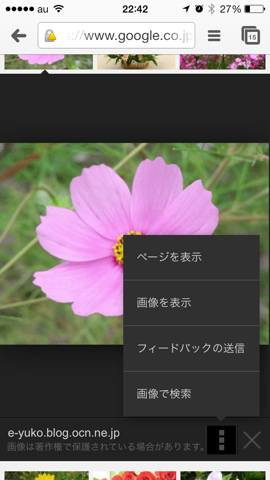 IMG 0696