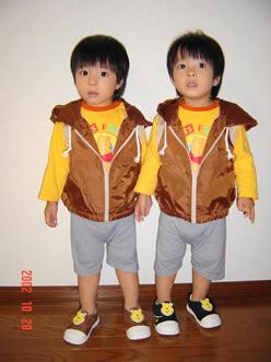 [双子]双子(ツインズ)の子育て・育児の悩みごとについて