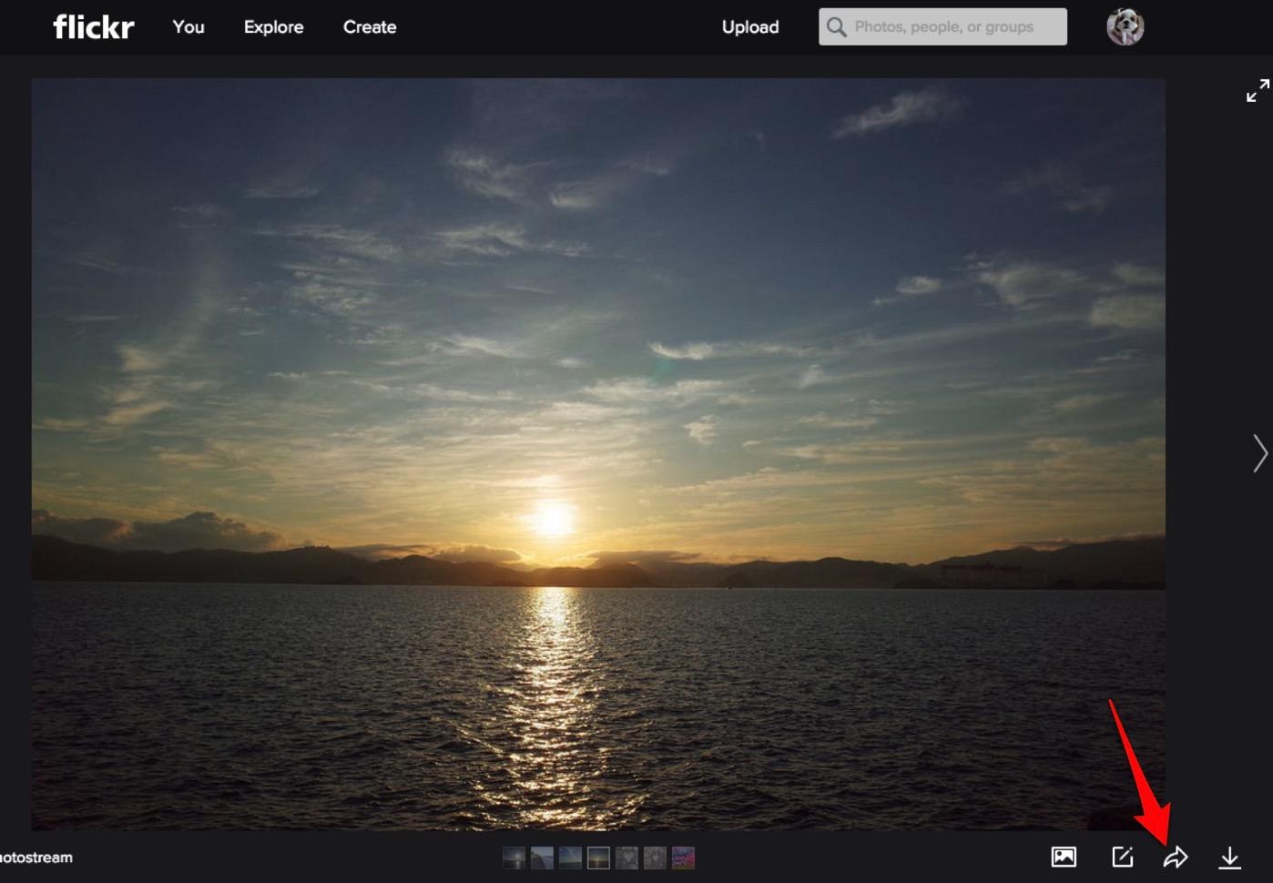 Flickr-3
