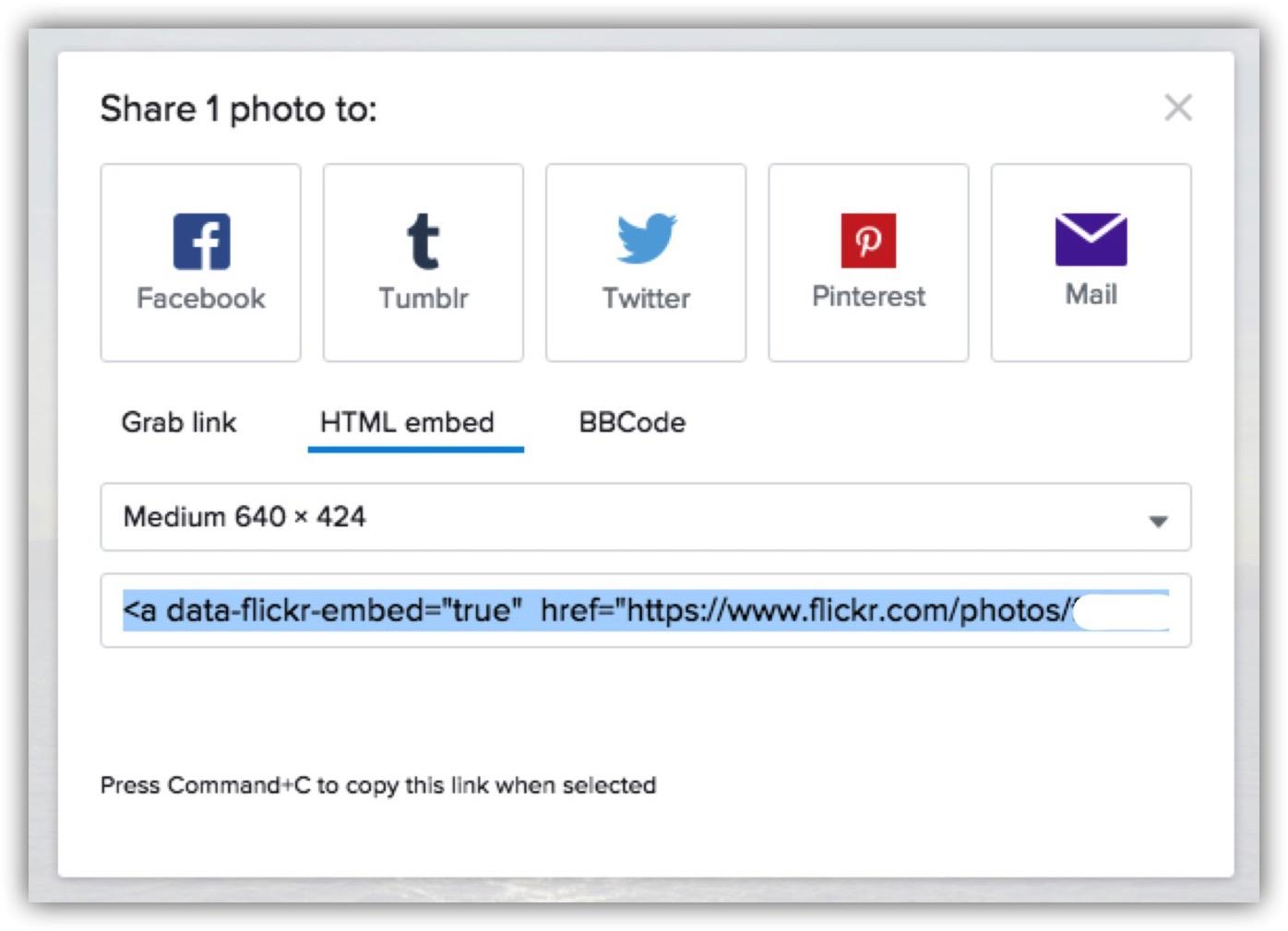 Flickr-4