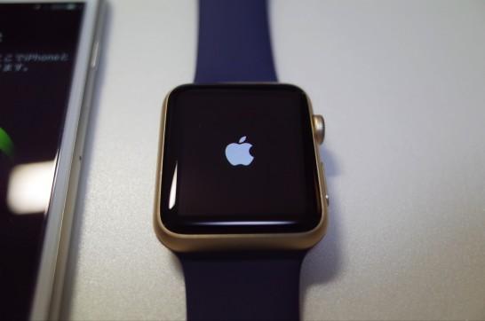 [AppleWatch]念願のApple Watch(ゴールド)が届いたので早速開封の儀を行ってみたよ