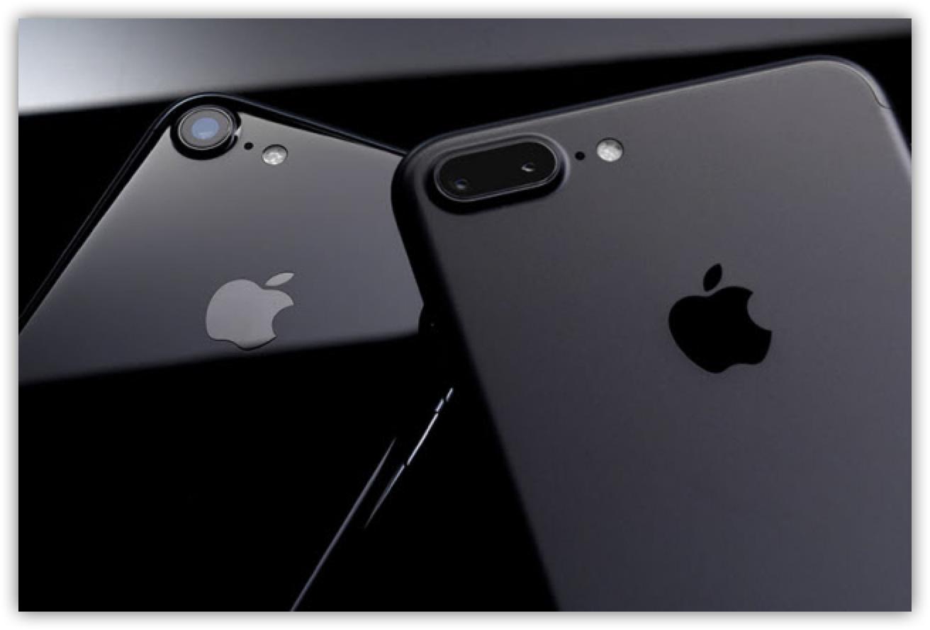 [iPhone]新型iPhone 7と愛用機iPhone 6の写真を撮り比べてみたよ