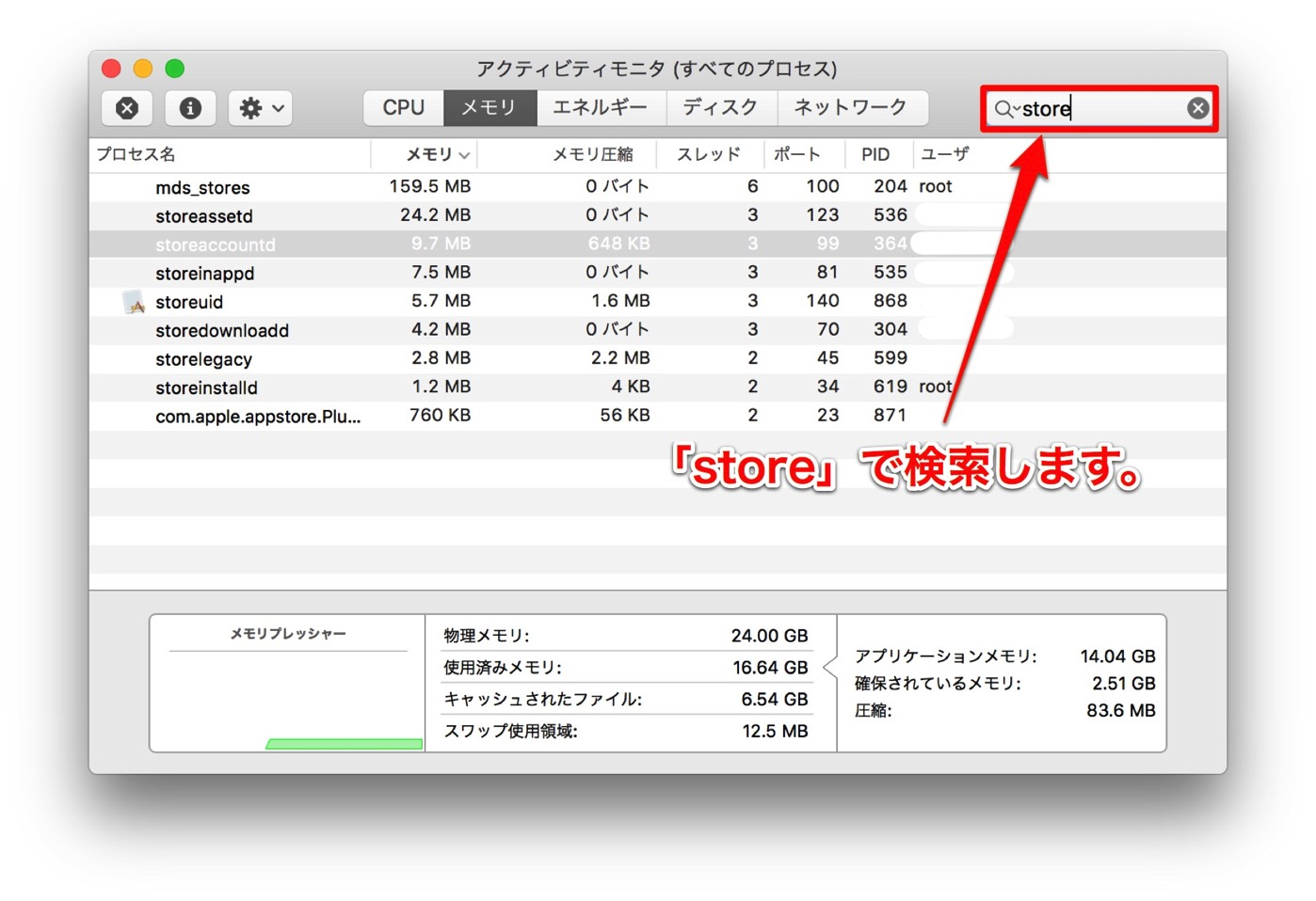 AppleStore-5