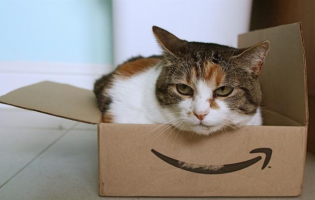 [Amazon]プレゼント企画で当選したAmazonギフト券の設定方法について