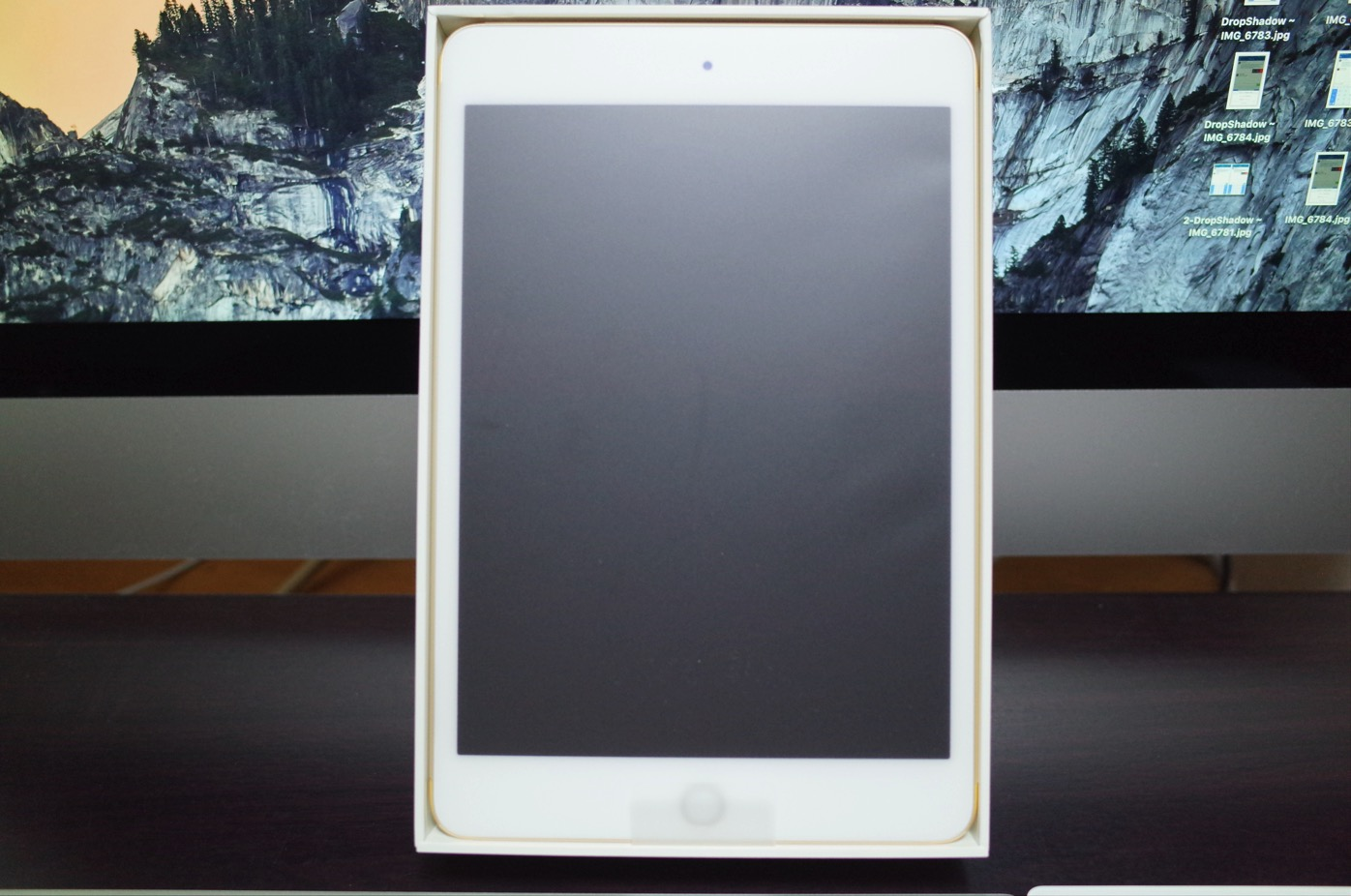 iPad mini 4-4