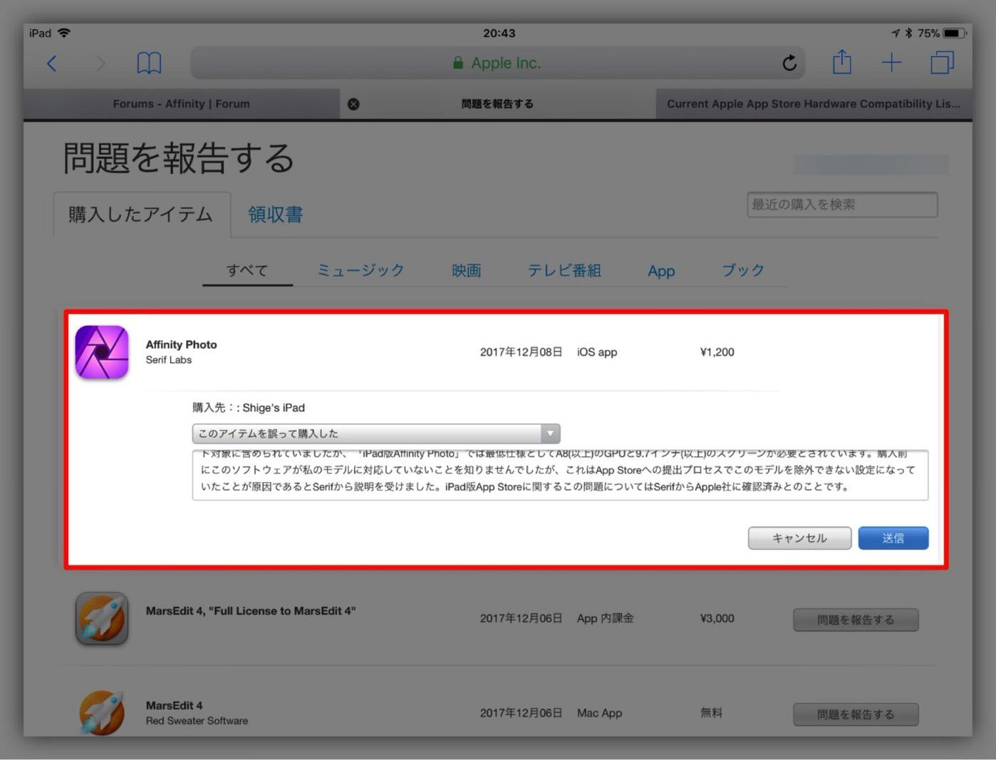 Affinity Photo for iPad-11