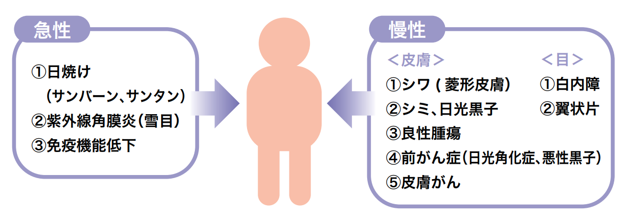 紫外線-2